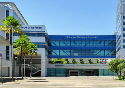 School of Biological Sciences, Nanyang Technological University